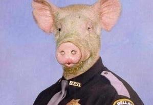 Prase v policejní uniformě