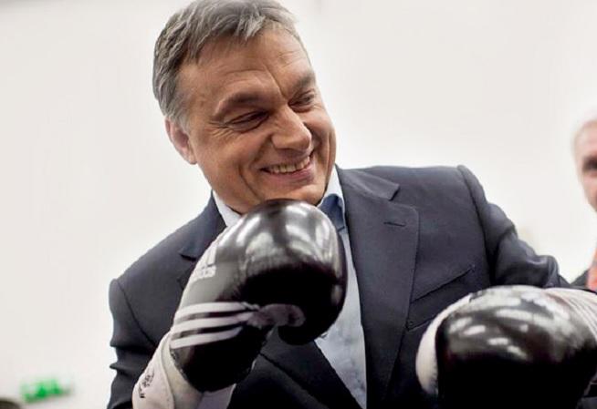 Viktor Orbán | foto: femina.hu